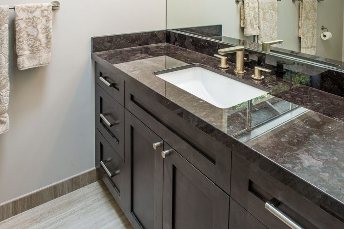 Andrews San Rafael Hall Bathroom Design - Krista Van Kessel Designs